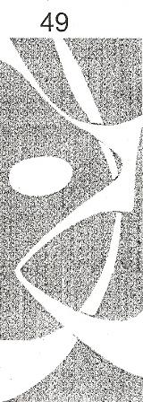 window-film-design-49